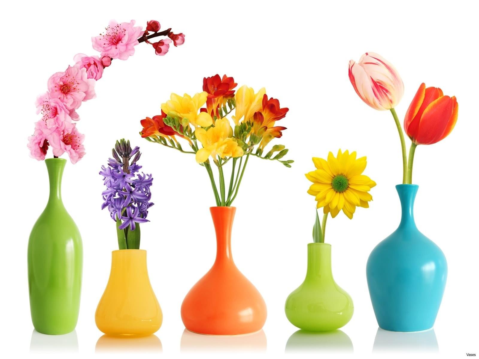 flower vase pic of 18best of colorful flowers pictures clip arts coloring pages inside colorful flowers pictures new colorful etched vasesh vases flower vase i 0d design ideas flower