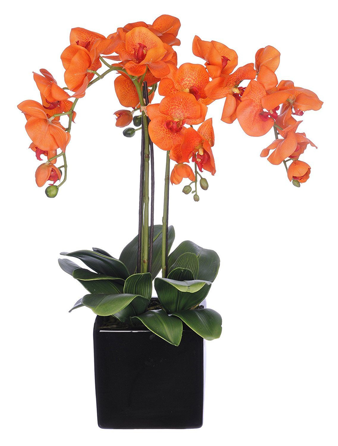 flower vase with artificial flowers online shopping of amazon com house of silk flowers artificial triple stem all with regard to amazon com house of silk flowers artificial triple stem
