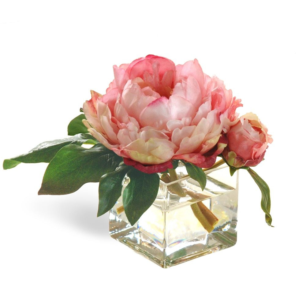 flowers square vase of peony blossoms in square glass vase 8 tall pink peony and flowers within this peony bud and peony blossom are quite comfortably located in this classic square vase
