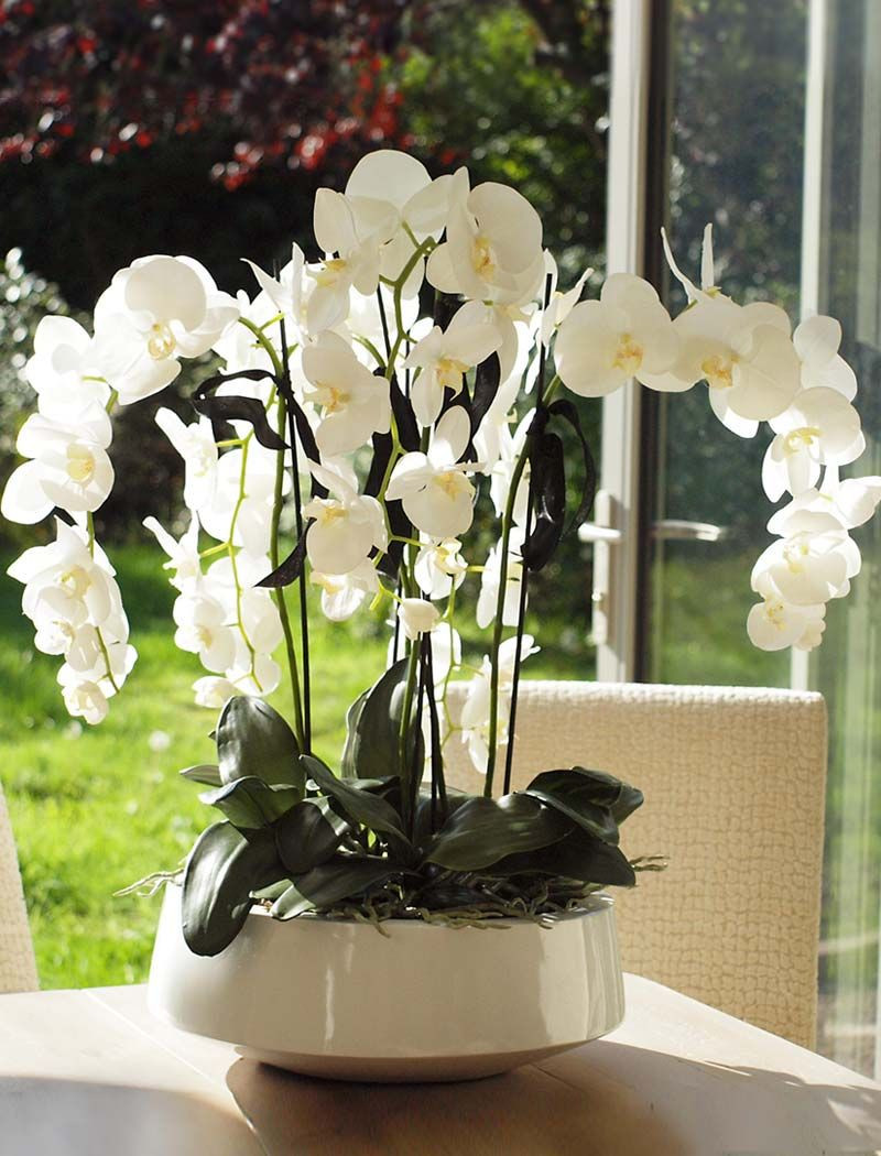 Flowers with Vase Delivery Uk Of Flower Arrangement Kerala Floral Arrangement Inspiration Throughout orchids In A White Lacquered Bowl Rtfact