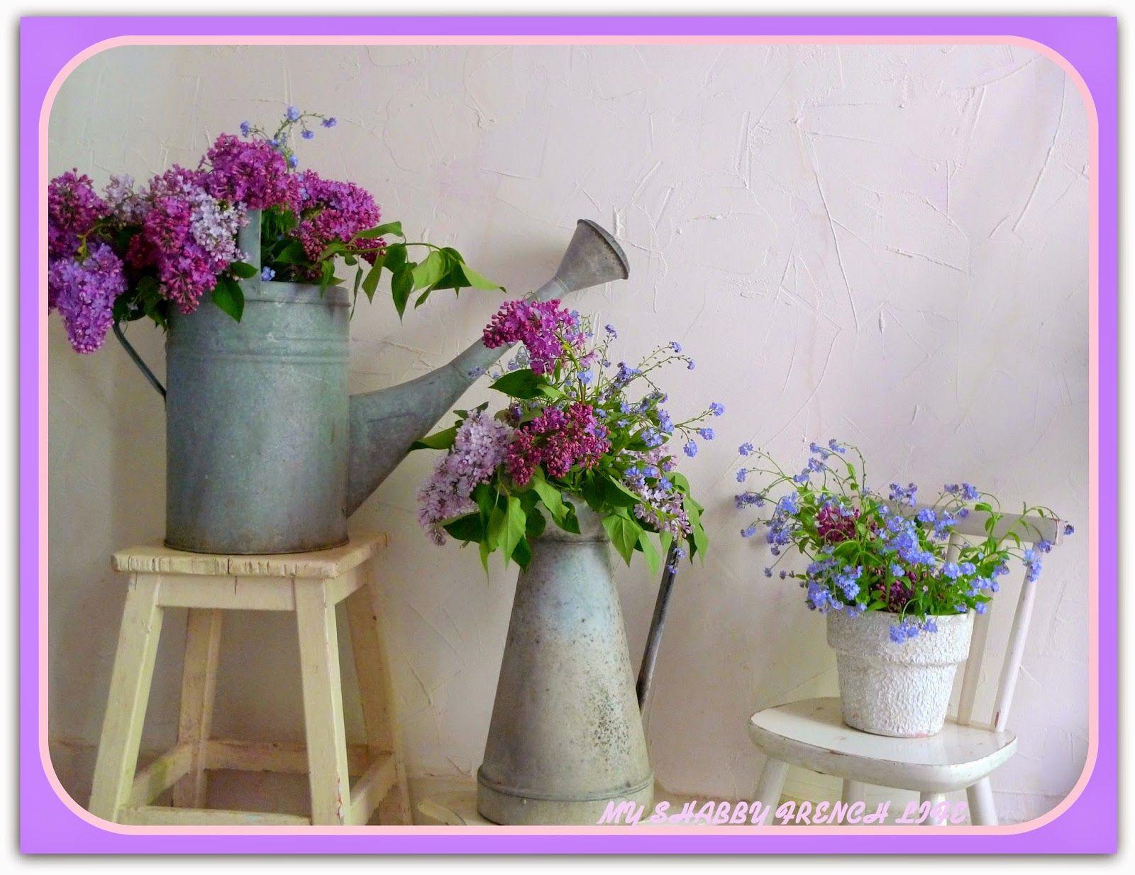 Galvanised Flower Vase Of My Shabby French Life Happy Shabby Spring Fleurs Romantiques Inside My Shabby French Life Happy Shabby Spring