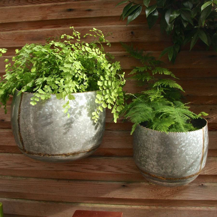 Galvanised Flower Vase Of Set Of Two Zinc Bowl Wall Planters by London Garden Trading Inside Set Of Two Zinc Bowl Wall Planters
