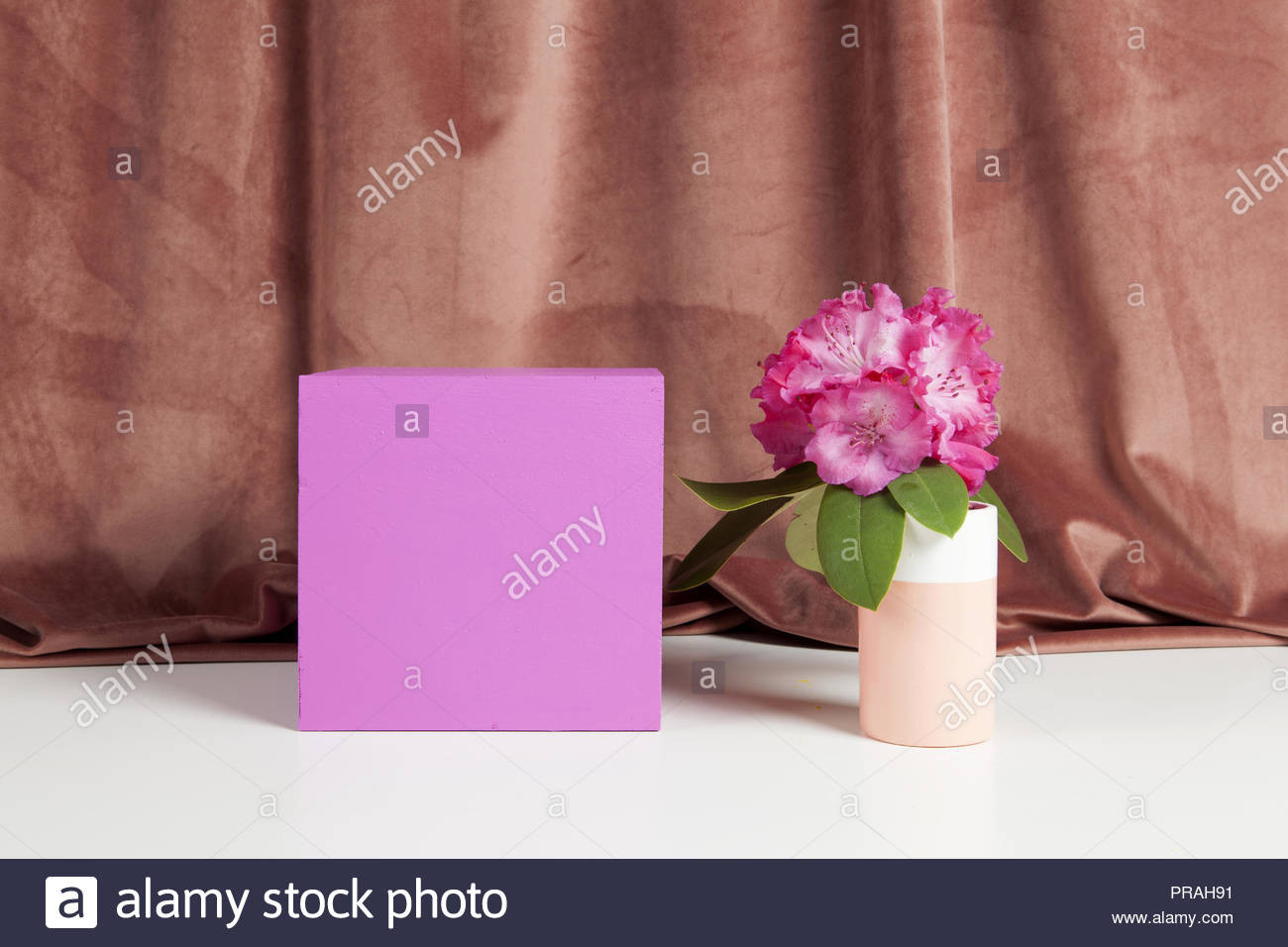 gladiolus vase of pedestal vase stock photos pedestal vase stock images page 2 alamy in bicolor vase with flowers pink rhododendron inside on a pink coloured cube minimal still life