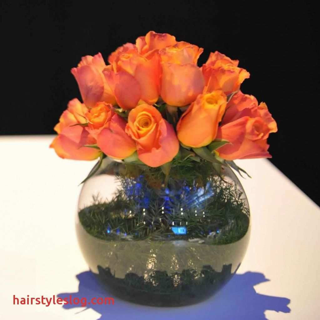 glass bubble fish bowl vase of 2018 small fish bowl flower arrangements ideas new 8 od orange rose inside 2018 small fish bowl flower arrangements ideas new 8 od orange rose foliage lined gold fish bowl best roses flower