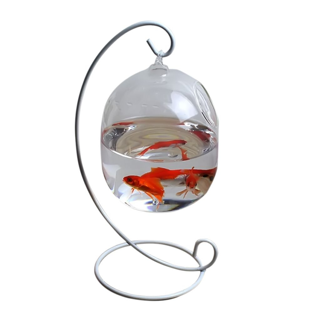 Glass Fish Vase Of Behokic Clear 12cm Height Hanging Glass Aquarium Fish Bowl Fish Tank Inside Behokic Clear 12cm Height Hanging Glass Aquarium Fish Bowl Fish Tank Flower Plant Vase with 23cm