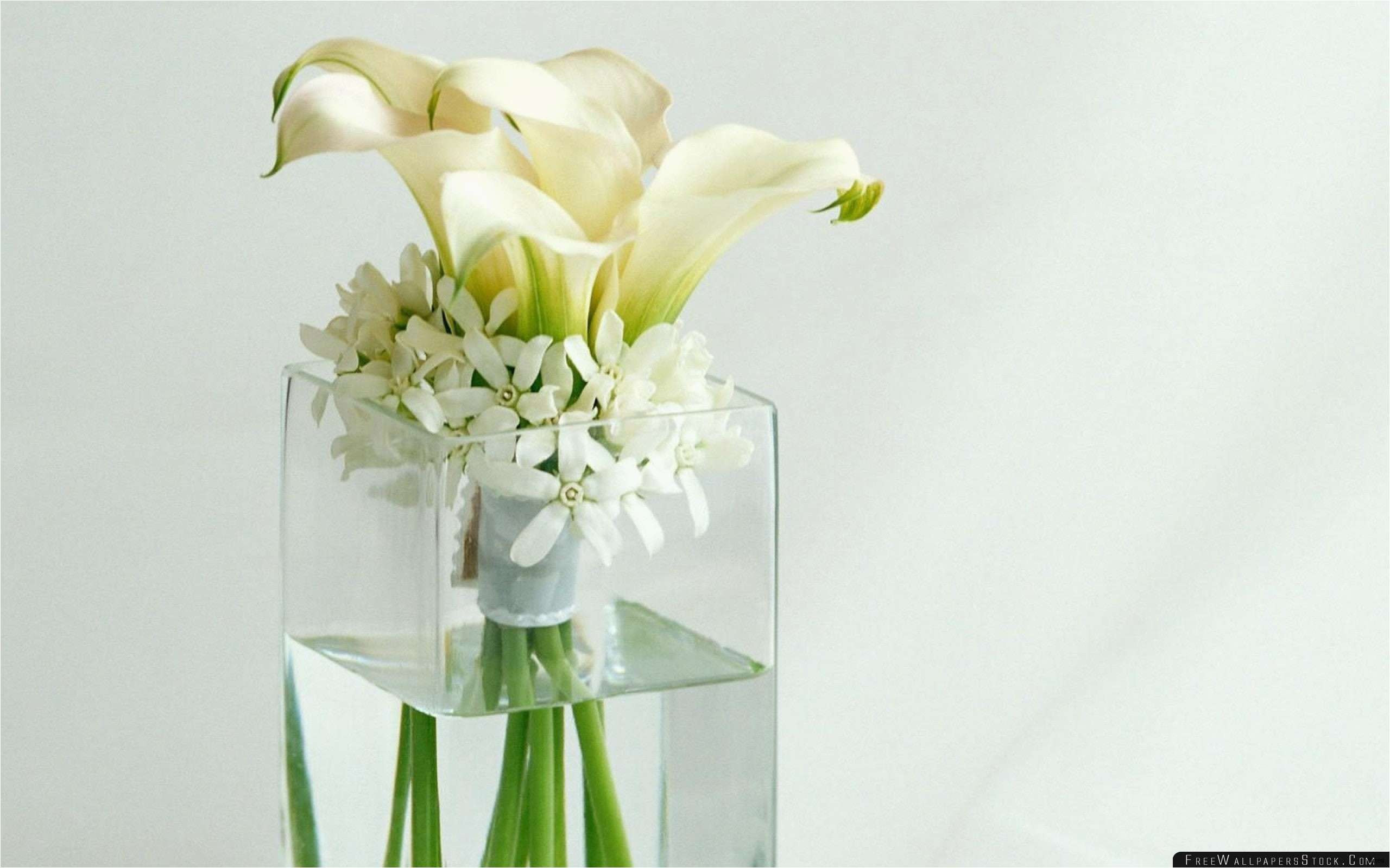 glass floral vases wholesale of 30 bulk photo frames photo best certificate examples with regard to best trumpet vases bulk fresh tall vase centerpiece ideas vases flowers in water 0d artificial gallery