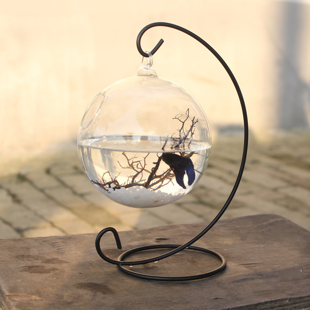 glass round fish bowl vases of clear round shape hanging glass aquarium fish bowl fish tank flower in clear round shape hanging glass aquarium fish bowl fish tank flower plant vase home decoration with 28cm height rack holder in aquariums tanks from home