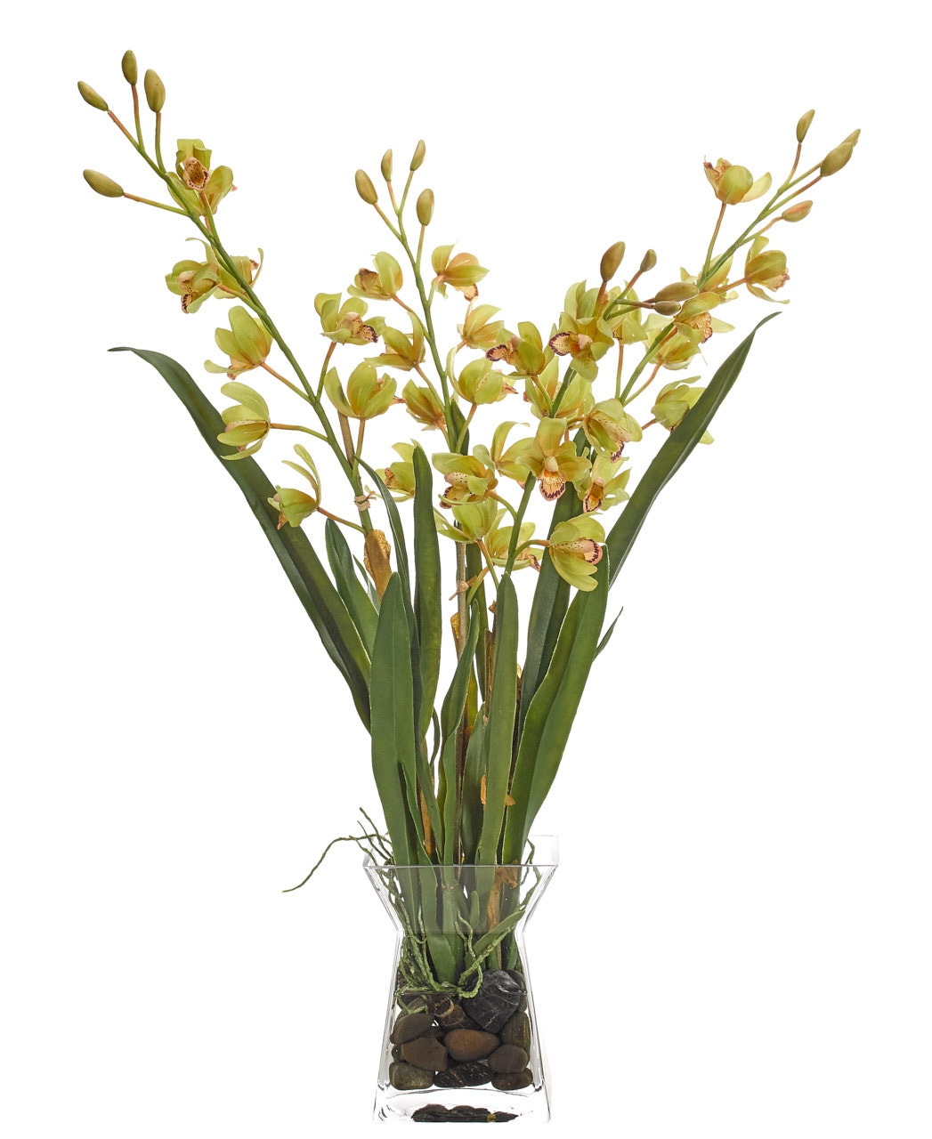 Glass tower Vase Of orchid Cymbidium Green Glass tower Vase 23wx22dx28h Inside 21911b3120e7ac04c5c629c81316