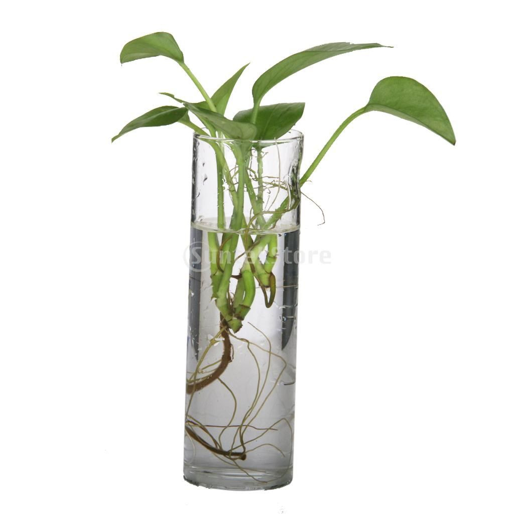 glass vase suppliers of cheap vase bottle buy quality hanging vase directly from china wall pertaining to cheap vase bottle buy quality hanging vase directly from china wall hanging vase suppliers