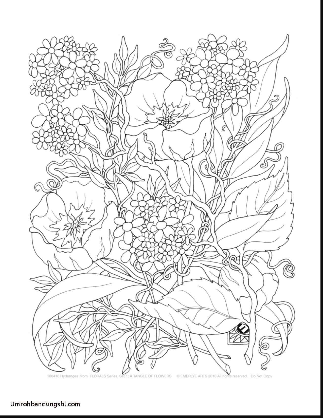 glass vase with hydrangea of coloring pages for adults flowers elegant beautiful cool vases inside beautiful cool vases flower vase coloring page pages flowers in a