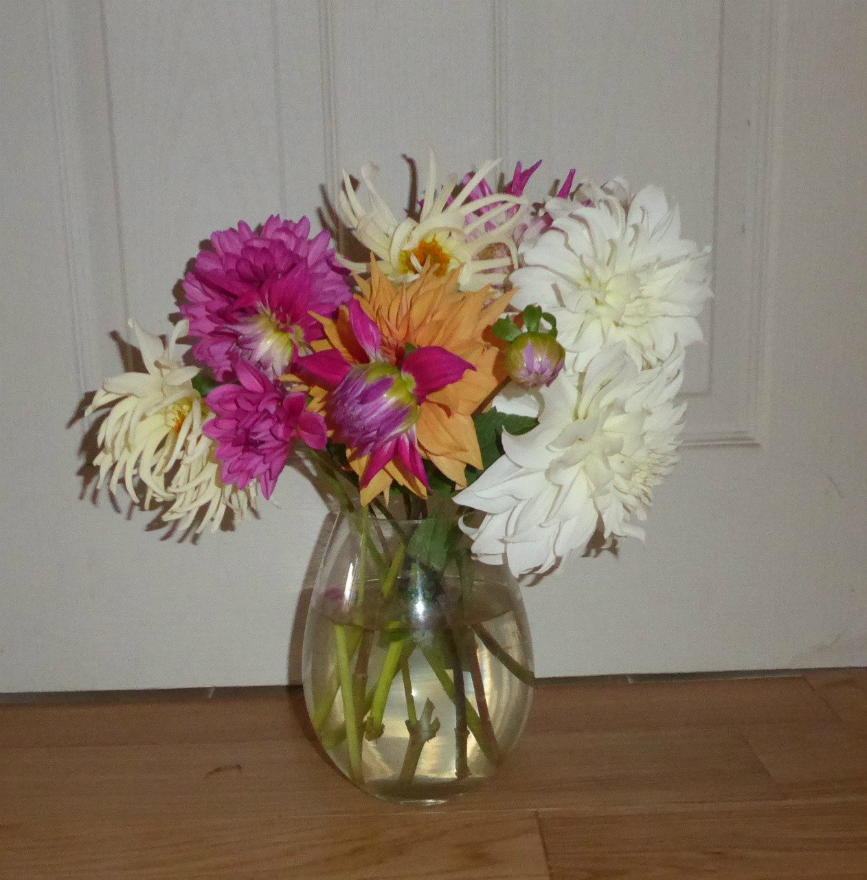 glass vase with lemons of november 2016 www alittlebitofsunshine co uk inside the large flowered begonias have given an impressive show this summer too but now like the dahlias it is time for them to rest and gather their strength