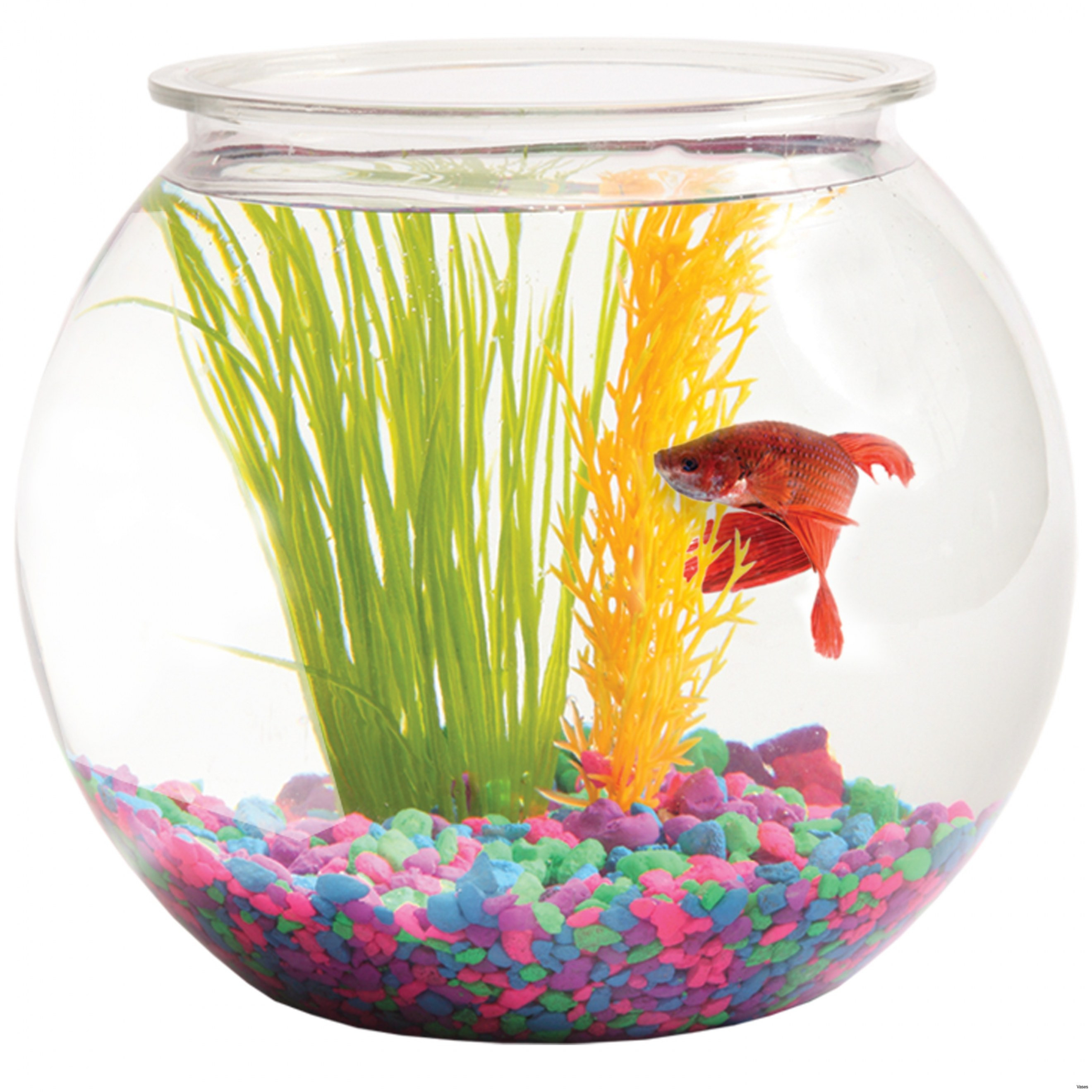 glass vases for betta fish of fish bowls in bulk pictures cool small fish bowls 22 awesome small within cool small fish bowls 22 awesome small fish bowl vases plastic bowls