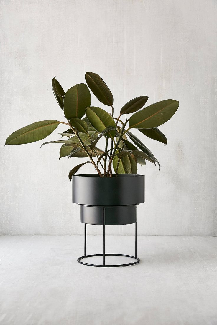 global views juggler vase of 18 best decorative accessories images on pinterest bedroom ideas within noa 8 metal planter stand