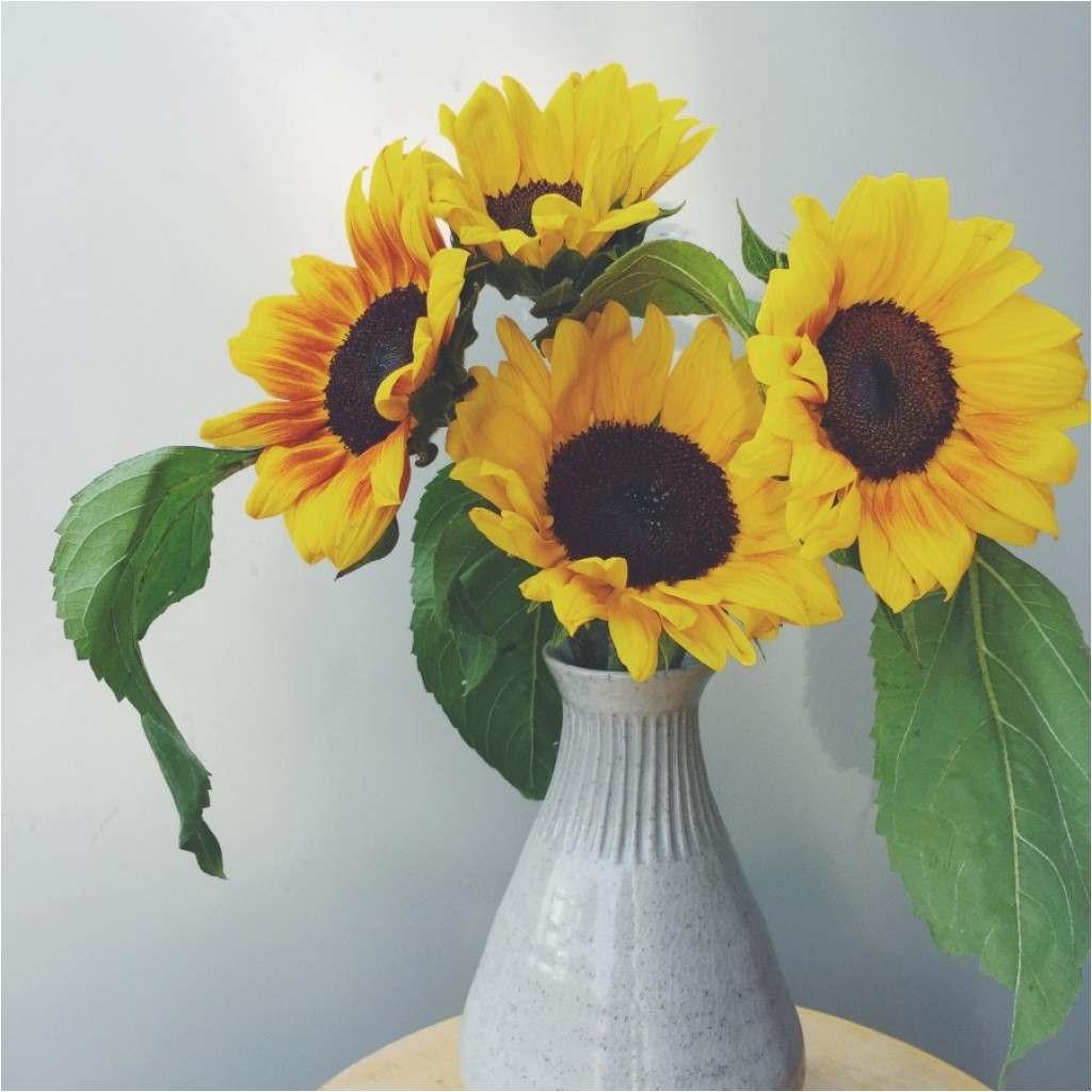 gold vase filler of best flowers inspirational coloring pages flower best cool vases inside best flowers 2018 best 15 cheap and easy diy vase filler ideas 3h vases i 0d