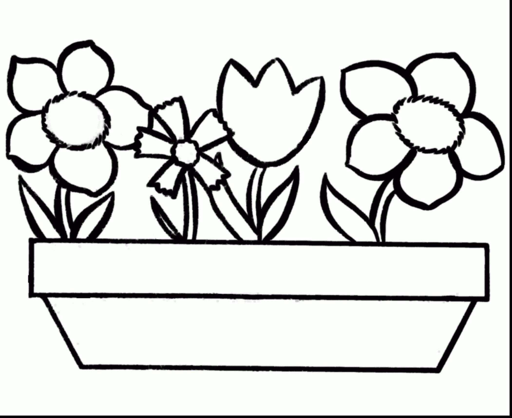 growing bulbs in vases of tulip bulb vase fresh coloring pages roses vases flower vase regarding tulip bulb vase fresh coloring pages roses vases flower vase coloring page pages