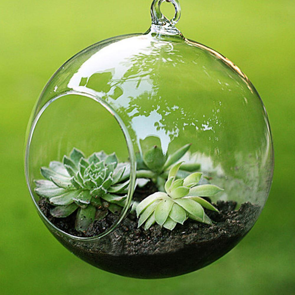 Hanging Ball Clear Glass Vase Centerpiece Of Fashion Transparent Clear Glass Round Terrarium Flower Plant Stand with Regard to Fashion Transparent Clear Glass Round Terrarium Flower Plant Stand Hanging Vase Hydroponic Home Office Wedding Garden Decor Buy Glass Vases Buy Glass Vases