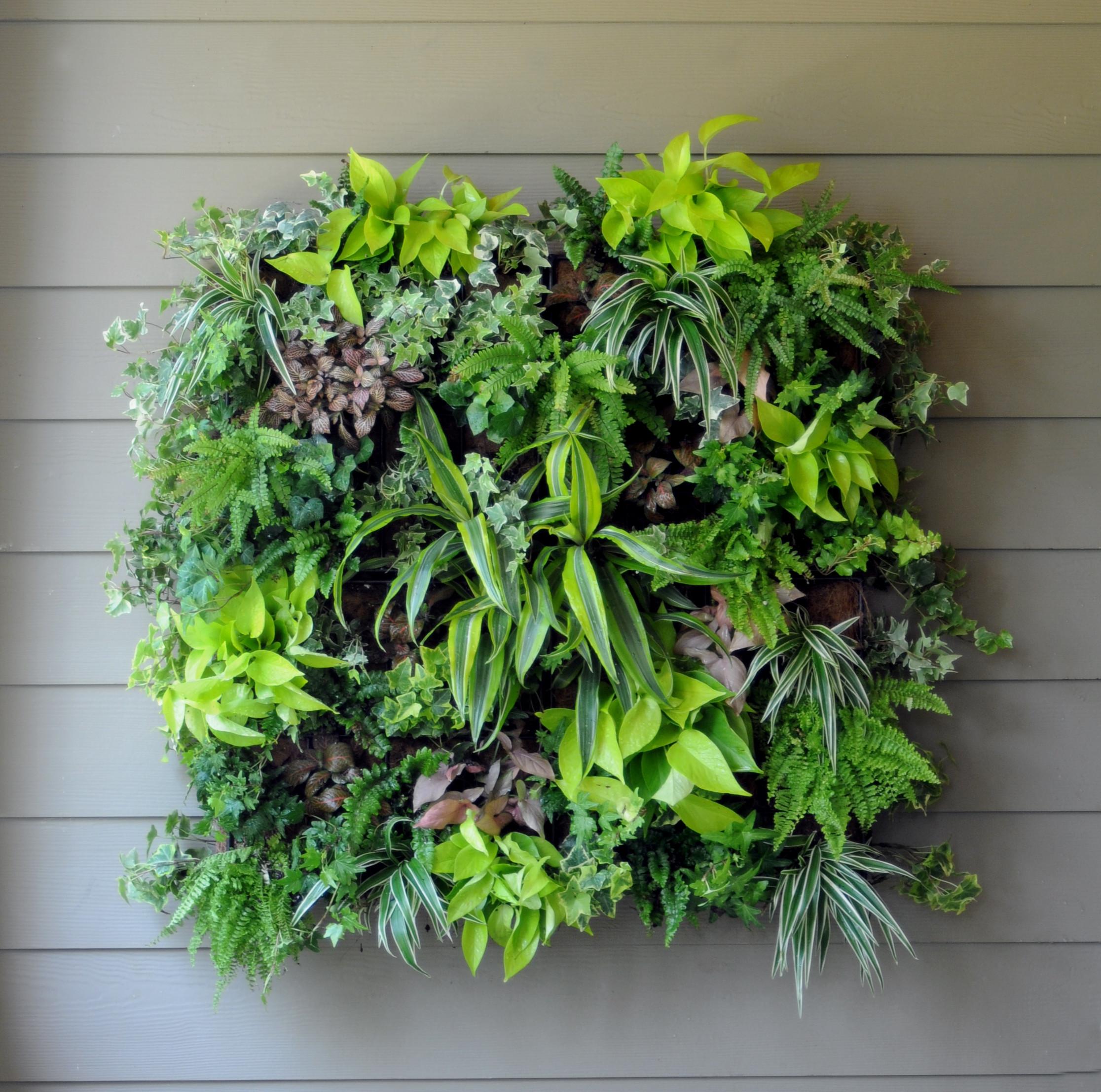 hanging glass rooting vases of kinsman garden everedge lawn edging gardening in 2661 2578 thumb