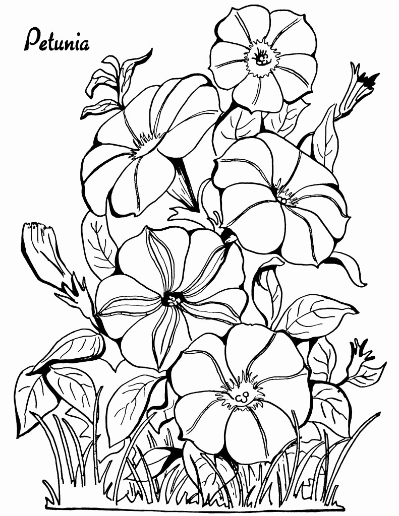 happy face vase of happy face coloring page lovely coloring pages inspirational crayola pertaining to pictures of flowers and butterflies to color unique coloring flowers beautiful cool vases flower vase coloring