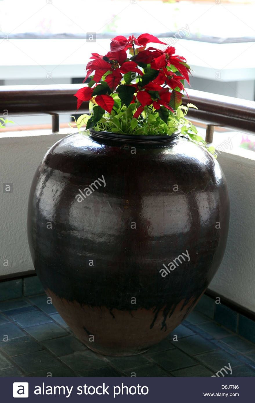 huge flower vase of wide glass vase image paint a picture luxury h vases paint vase i 0d in wide glass vase pictures corner big flower vase vase pinterest of wide glass vase image paint