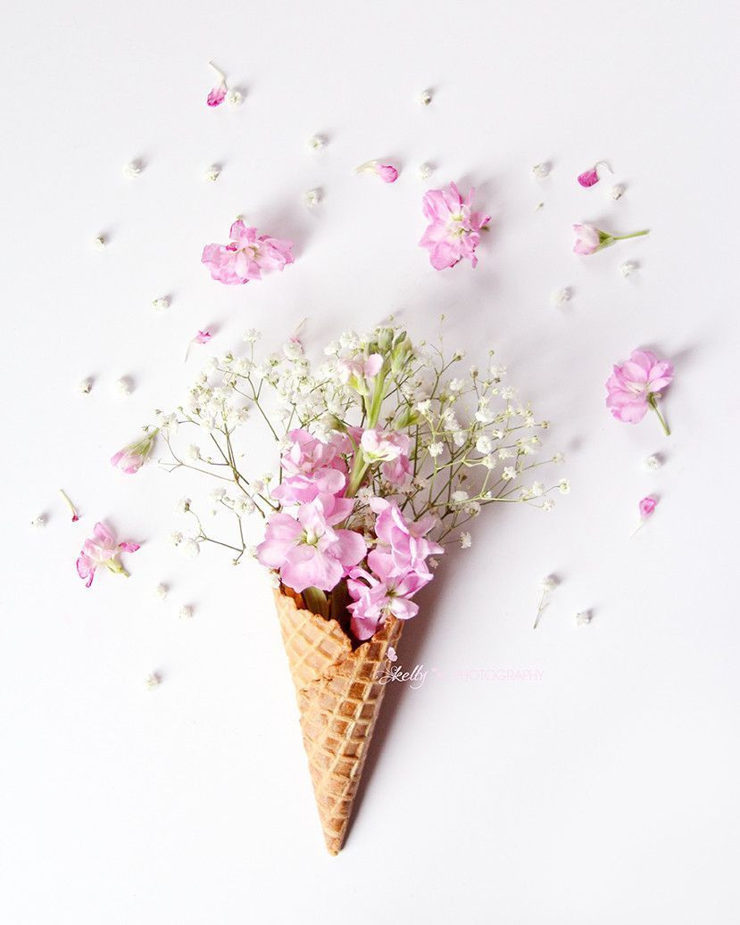 ice cream cone flower vase of stock flower cone floral still life photo •art projects within stock flower cone floral still life photo more
