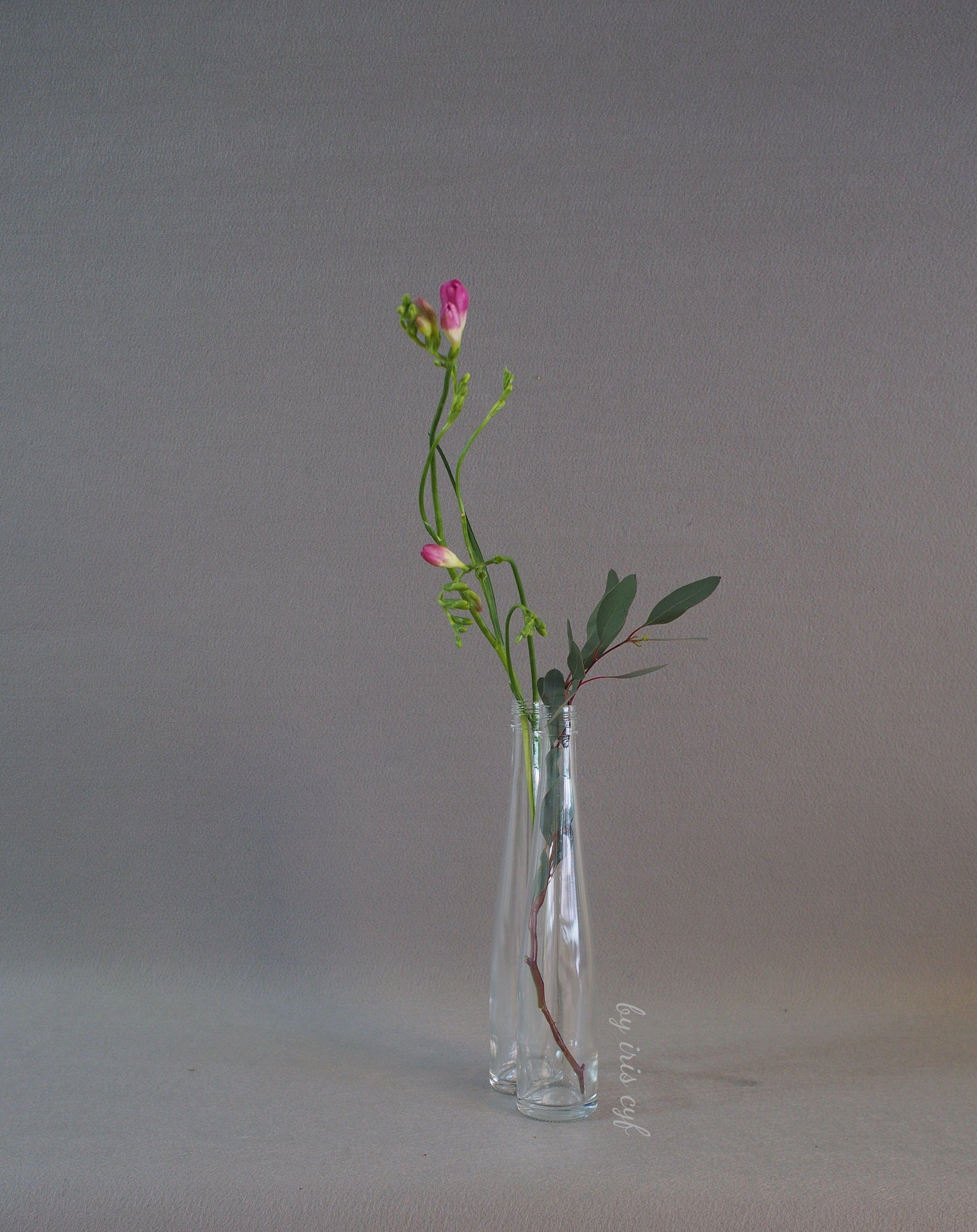 ikebana flower vase of vase glass ikebana rose simplicity ikebana by iriscyf within vase glass ikebana rose simplicity