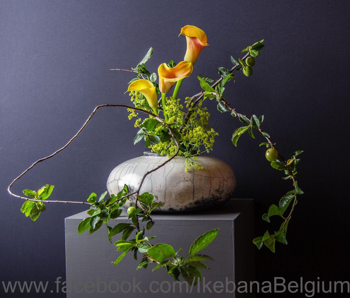 japanese ikebana vases of ikebana design for the exhibition june 2012 vase christian van inside ikebana design for the exhibition june 2012 vase christian van dijck