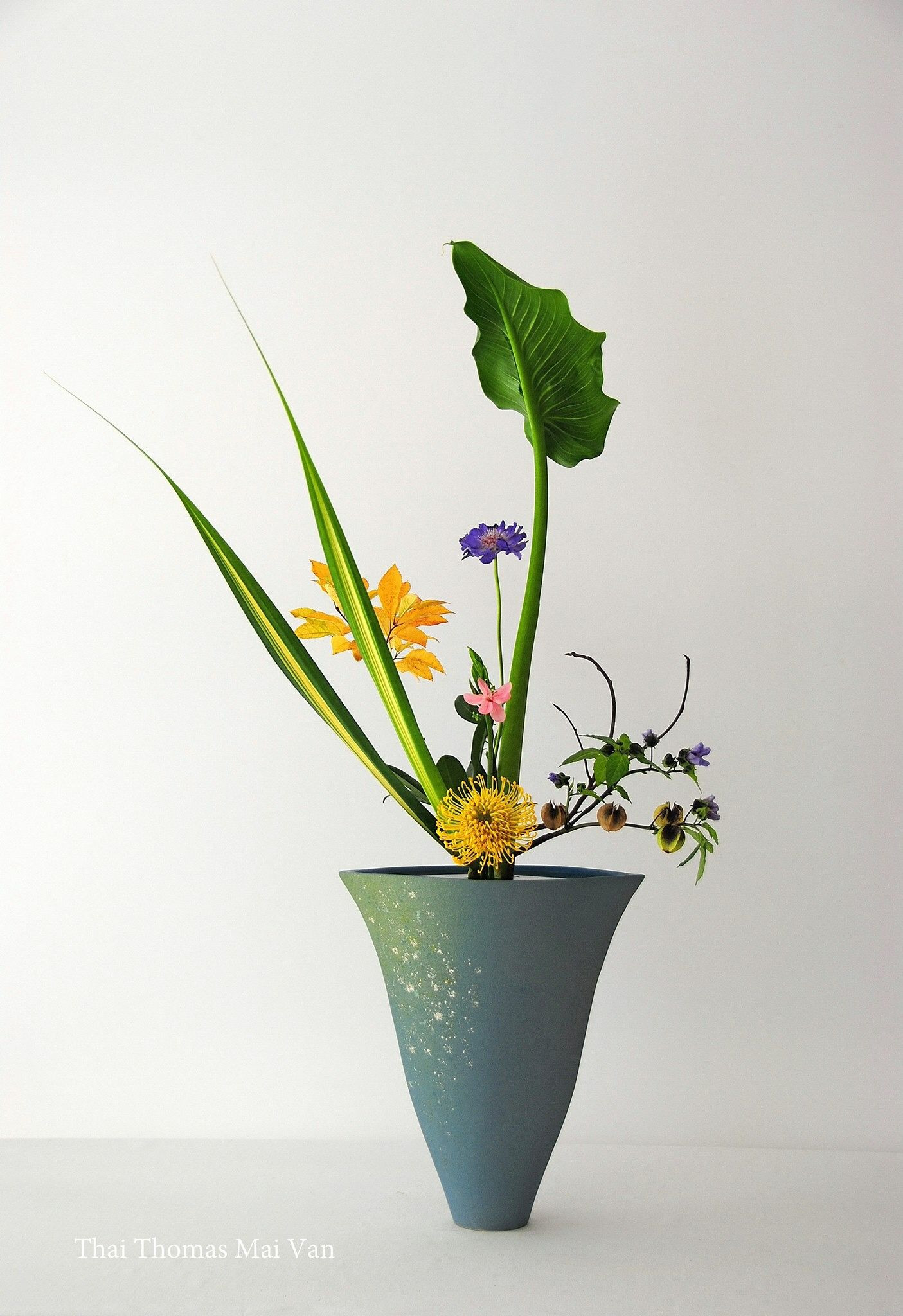 japanese ikebana vases of mai thai thomas flower a¤ ikebana a¤ ikenobo a¤ sogetsu pinterest within mai thai thomas