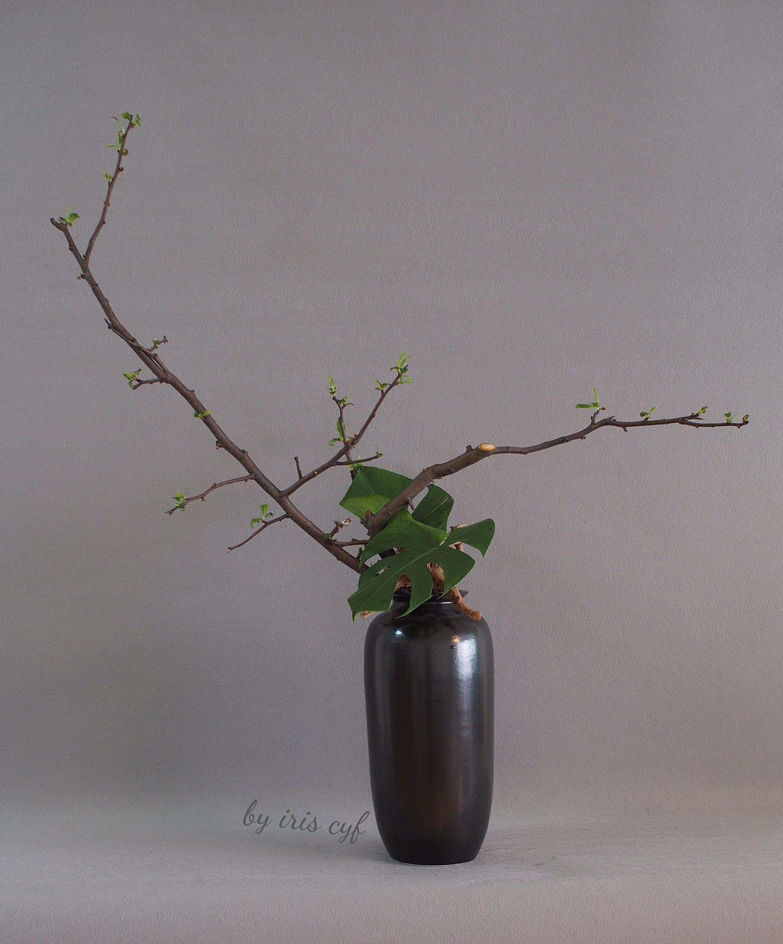 Japanese Ikebana Vases Of Vasei¼Œgreen Ikebana Leaf Ikebana by Iriscyf Pinterest Ikebana with Vasei¼Œgreen Ikebana Leaf