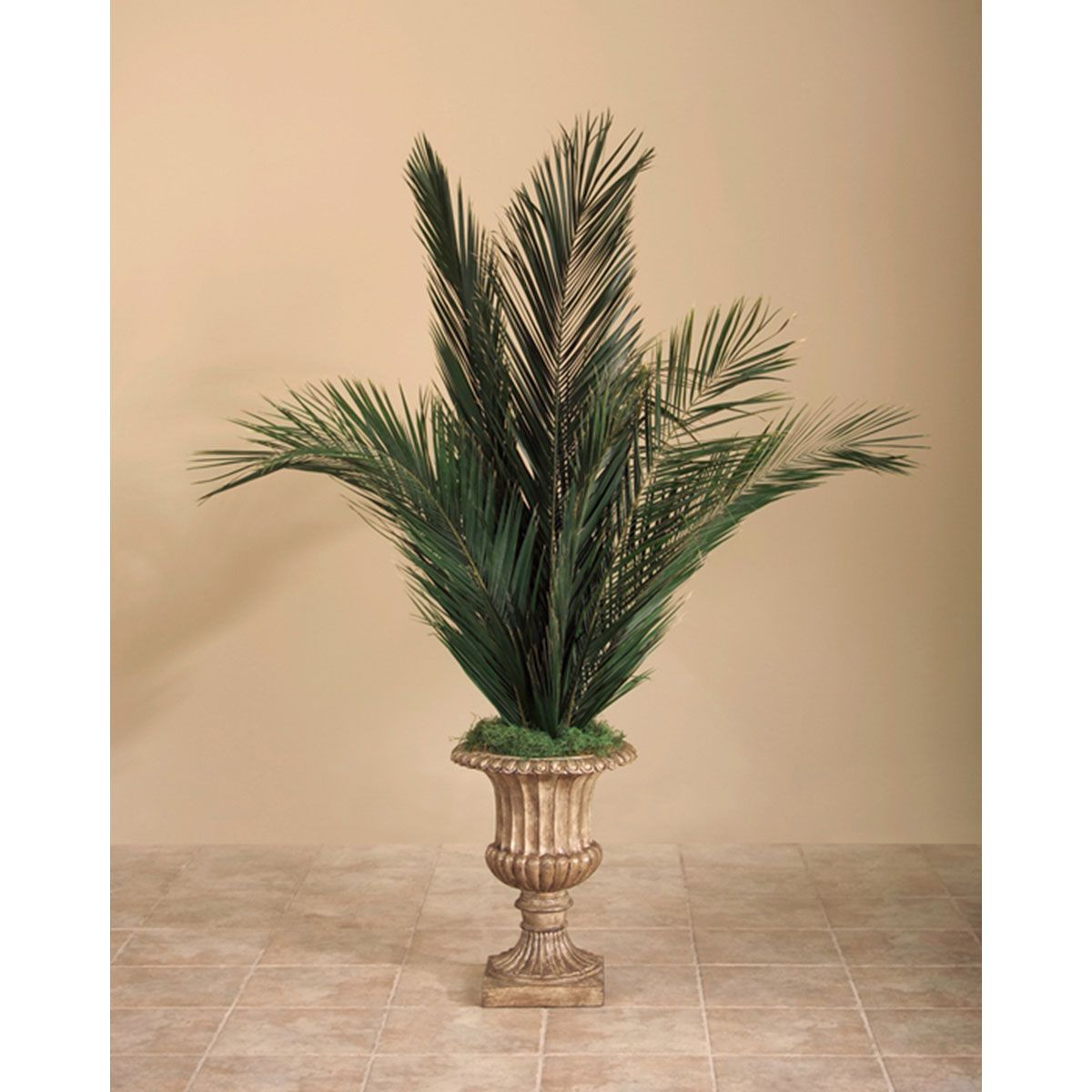 john richard vase of jrb 0235 john richard pinterest for john richard phoenix palms in urn