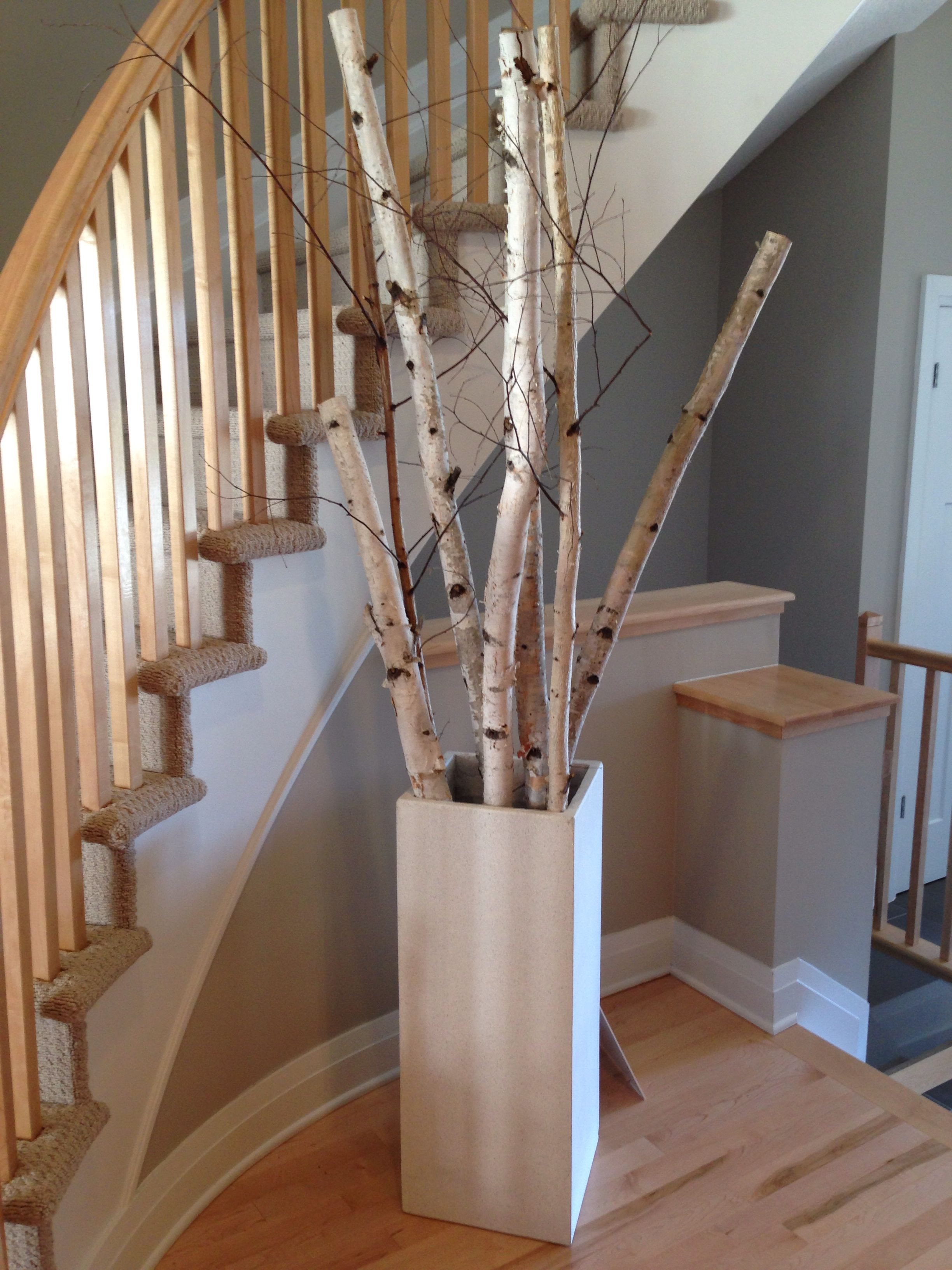 Large Indoor Floor Vases Of Interesting Grouping Of Birch Tree Branches for the Home Regarding Interesting Grouping Of Birch Tree Branches