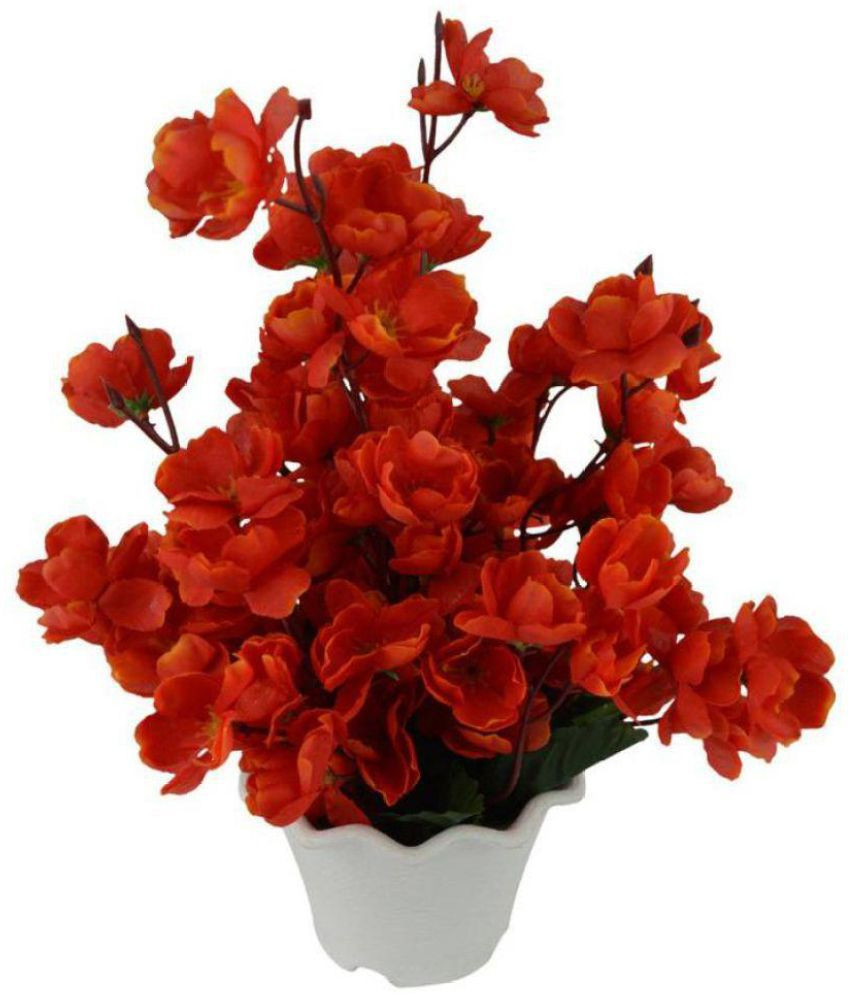 large orchid vase of miro orchids flowers with pot red pack of 1 buy miro orchids pertaining to miro orchids flowers with pot red pack of 1