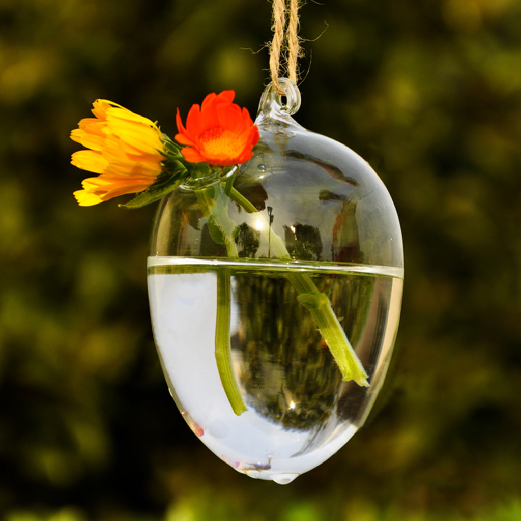 large round clear glass vase of aliexpress com buy clear round hanging glass vase bottle terrarium regarding aliexpress com buy clear round hanging glass vase bottle terrarium hydroponic planter pot flower diy home table garden decor from reliable decoration