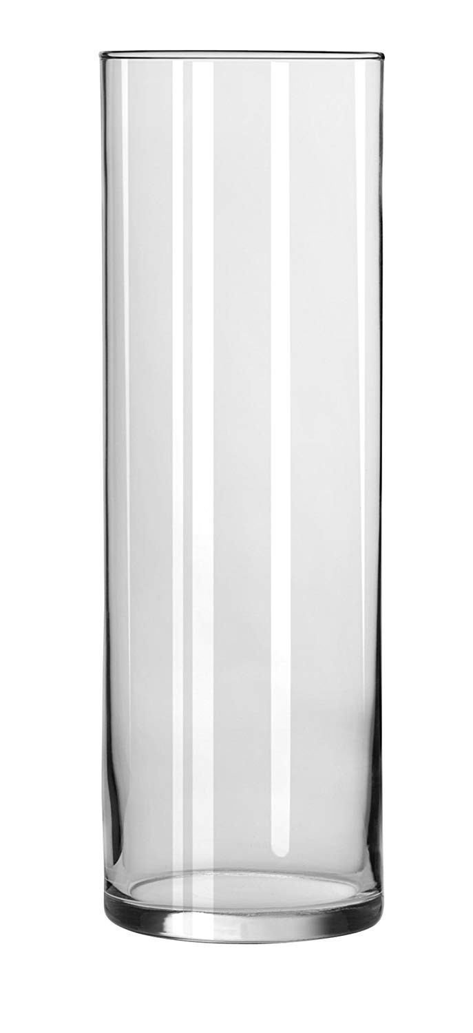 24 Best Libbey Clear Cylinder Bud Vase