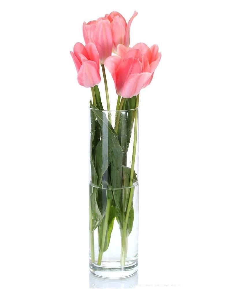 libbey glass cylinder vase 4.5 of amazon com cys gcy010 16 6 piece cylinder vase 16 4 home kitchen for 51yezu8mhql sl1000