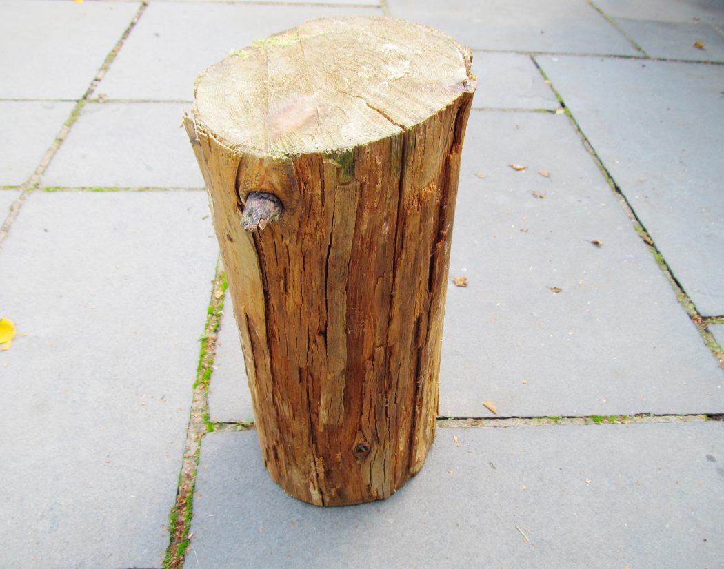 13 Stylish Log Vases for Sale