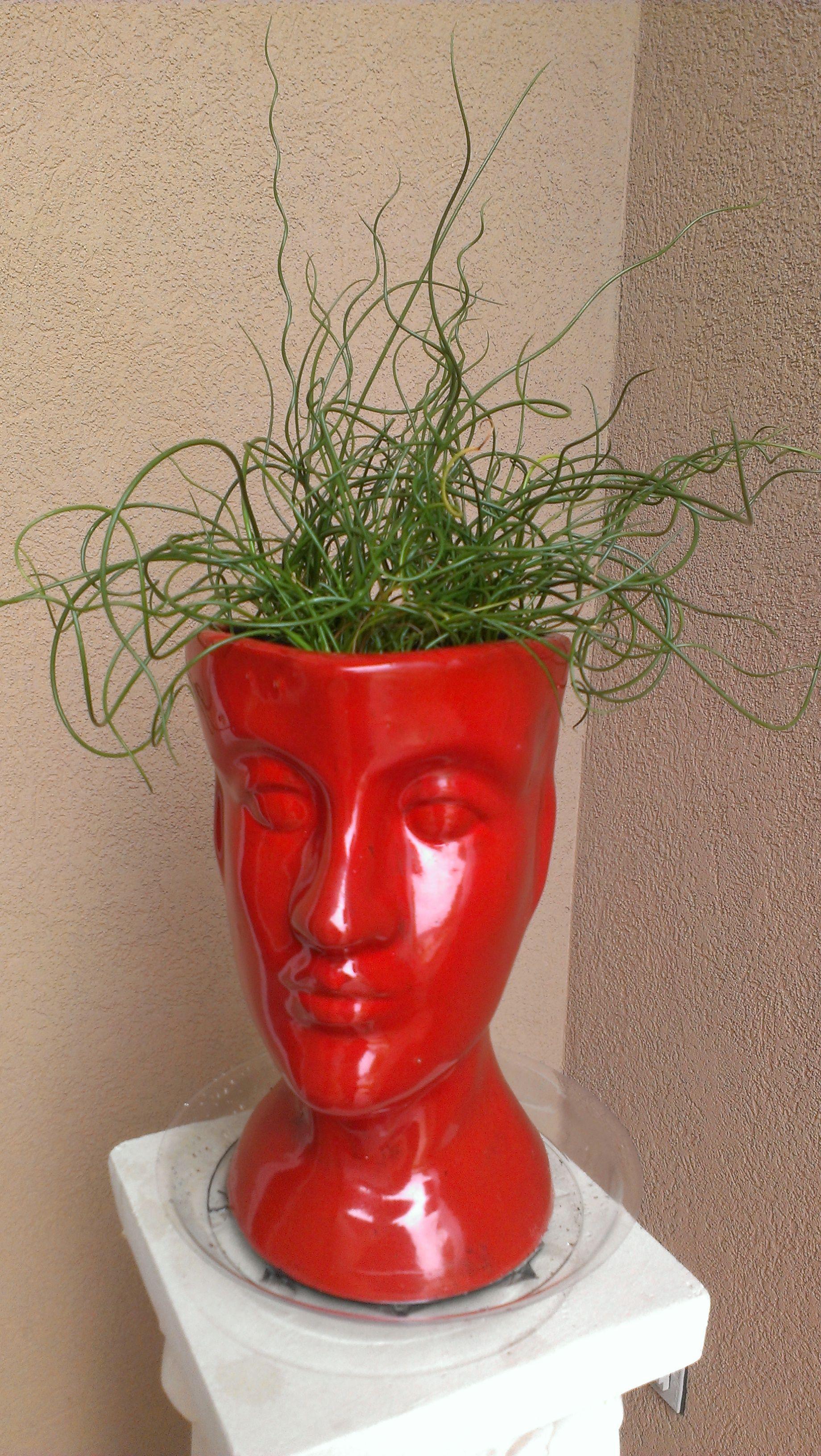 mannequin head vase of 24 large plant vase the weekly world intended for 24 large plant vase