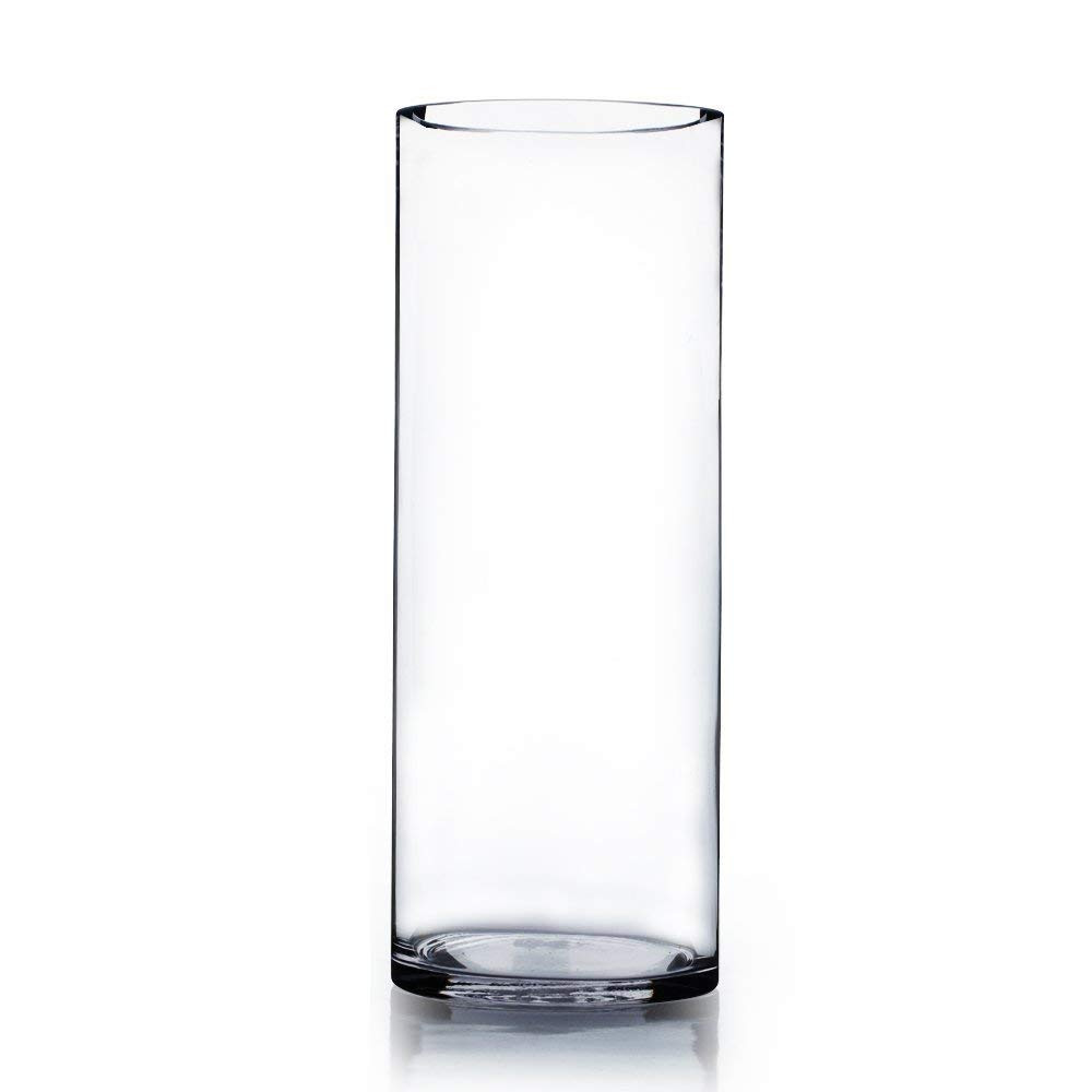 mikasa florale 14 inch vase of amazon com wgv clear cylinder glass vase 4 by 12 inch home kitchen inside 51epx7j1anl sl1000