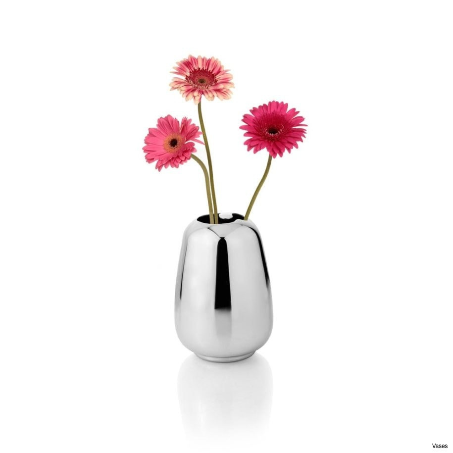mini flower vase of best flower image small size pets nature wallpaper for fantastic flower vase designs with small stainless 915x915h vases beautiful vasei 0d