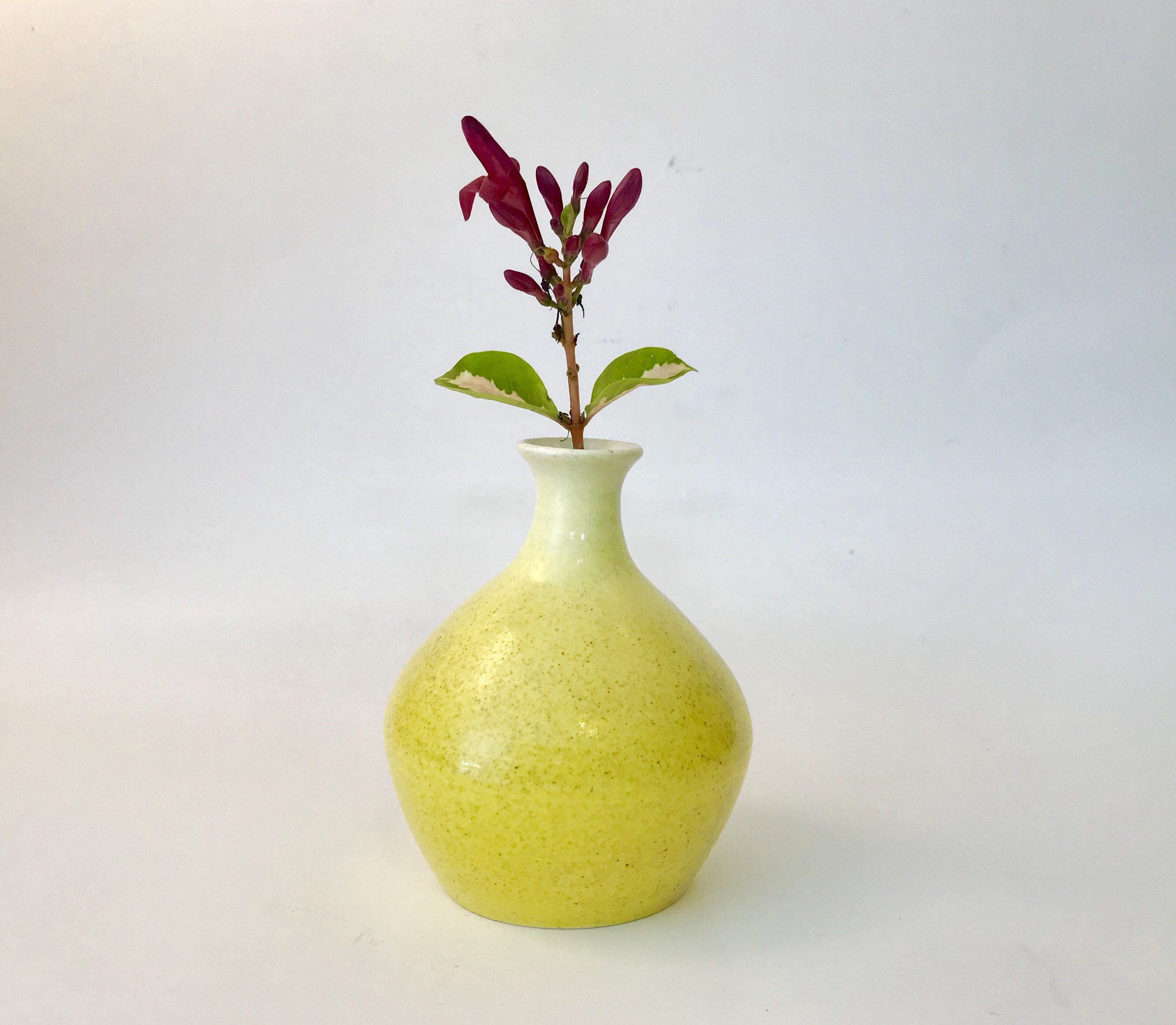 Mini White Bud Vases Of Ceramic Bud Vase Yellow White Speckled Pottery Vase Dots Glazed Inside Small Handmade Ceramic Bud Vase Yellow White Speckled Pottery Vase Dots Glazed Flower