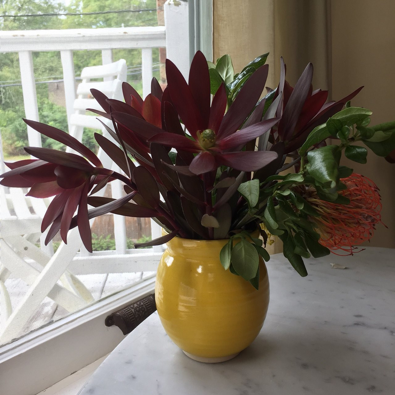 money plant in vase of blue barn bnb updated 2018 prices bb reviews millbrook ny for blue barn bnb updated 2018 prices bb reviews millbrook ny tripadvisor