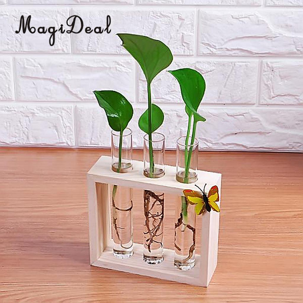 money plant in vase of magideal crystal glass vase test tube in wooden stand for flowers regarding aeproduct getsubject