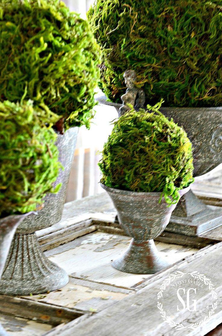 moss ball vase filler of 201 best flower and plant ideas inside images on pinterest in textured moss ball diy