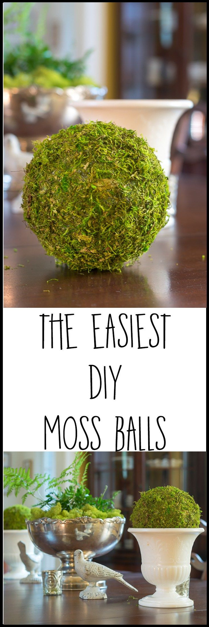 moss vase filler of 2062 best home organization inspiration decoration images on inside confounded by trying to wrap a square sheet of moss around a round object me
