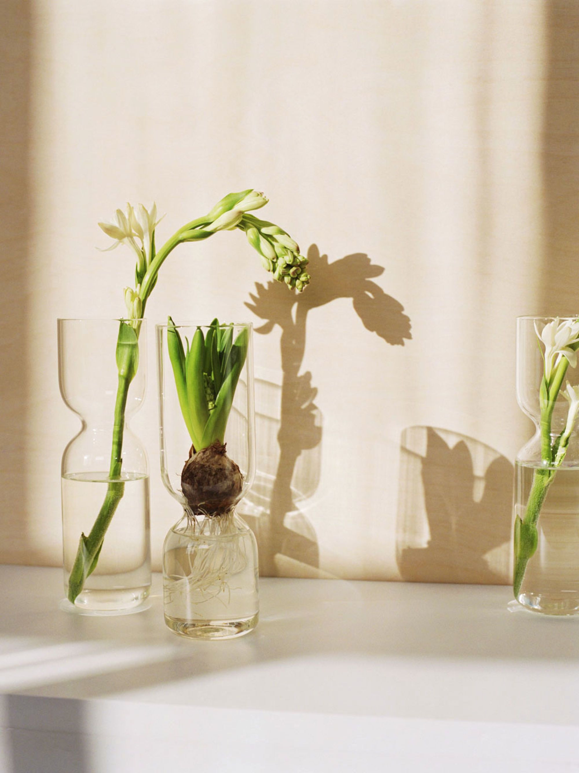 26 Elegant Narrow Neck Glass Vase 2021 free download narrow neck glass vase of p styletext align justifywith a design perfect for sprouting with with a design