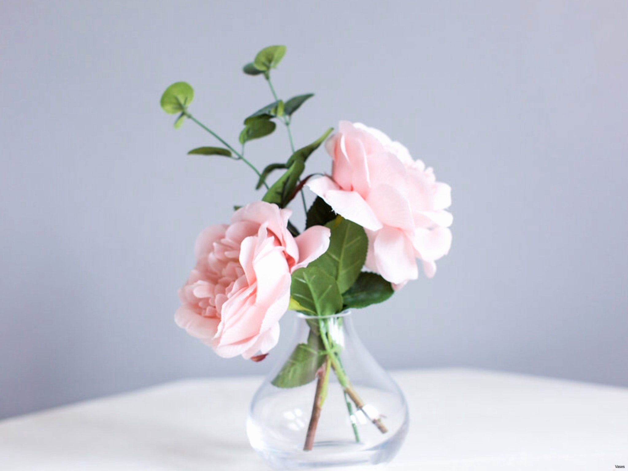 10 Ideal Narrow Neck Vase