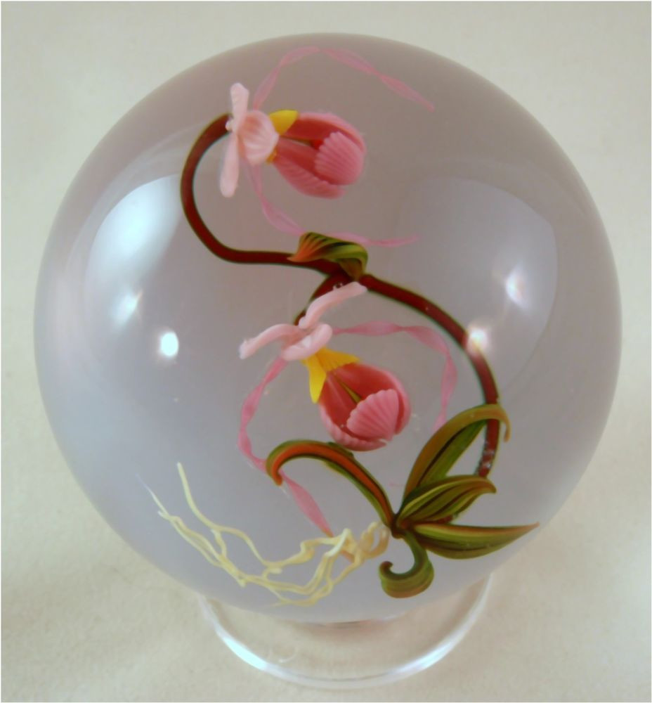 orchid in glass vase of mayauel wards orchid on a white base marble paperweights throughout mayauel wards orchid on a white base marble