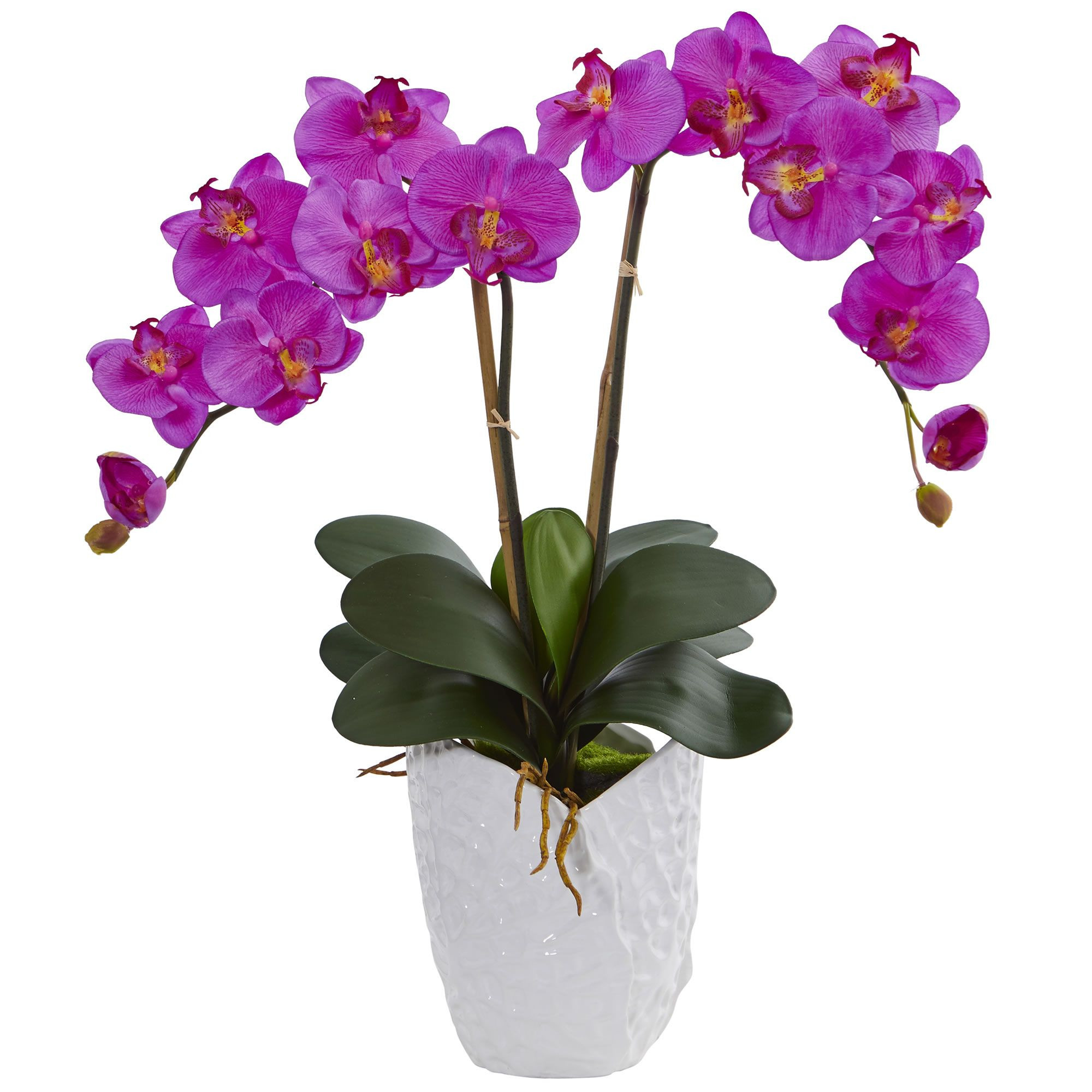 orchid vase arrangement of cut crystal vase filled with cymbidium orchids phalaenopsis orchids in 23 orchid double phalaenopsis orchid artificial arrangement in white vase