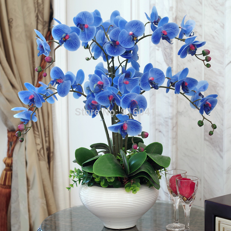 Orchid with Vase Of Aliexpress Com Buy Real touch Phalaenopsis Set High Simulation Throughout Aliexpress Com Buy Real touch Phalaenopsis Set High Simulation orchids Flower Decoration Flower Leaves Living Room Display Flower Free Shipping From