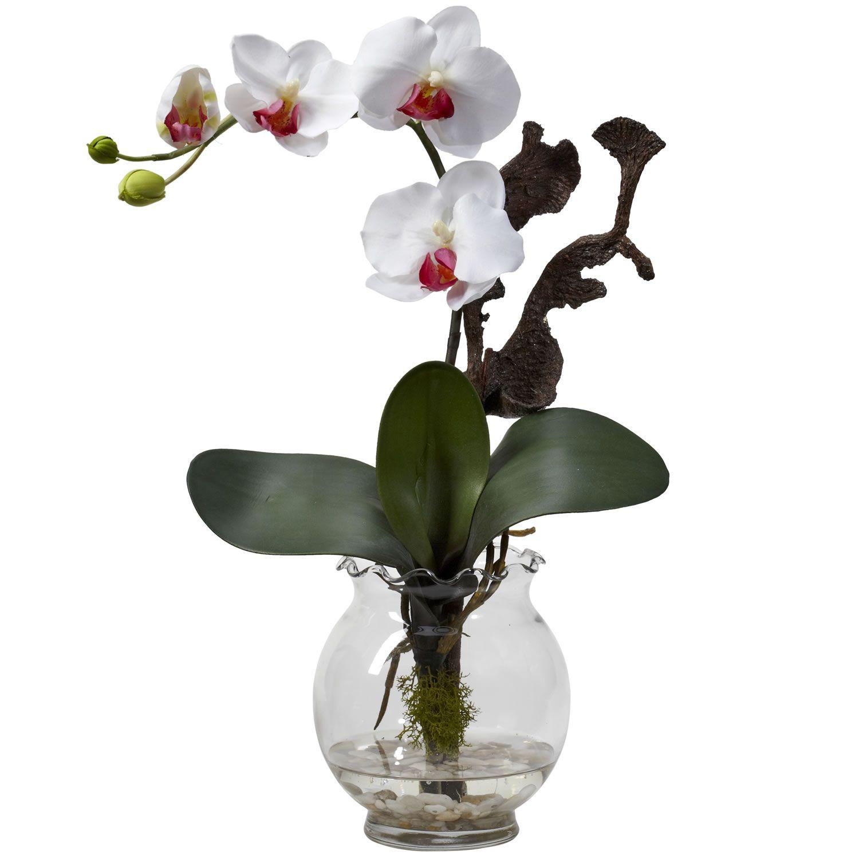 Orchid with Vase Of attention Mini Phalaenopsis W Fluted Vase Silk Flower Arrangement Intended for attention Mini Phalaenopsis W Fluted Vase Silk Flower Arrangement White