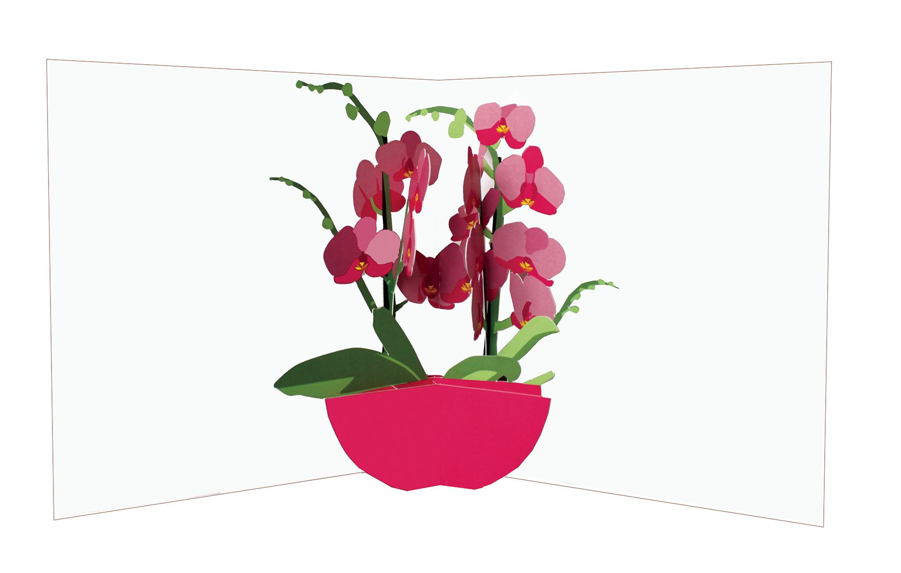 Orchid with Vase Of orchids In Vases Home Safe within Flower Vases orchids